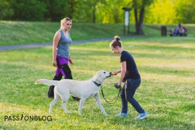 trening z psem