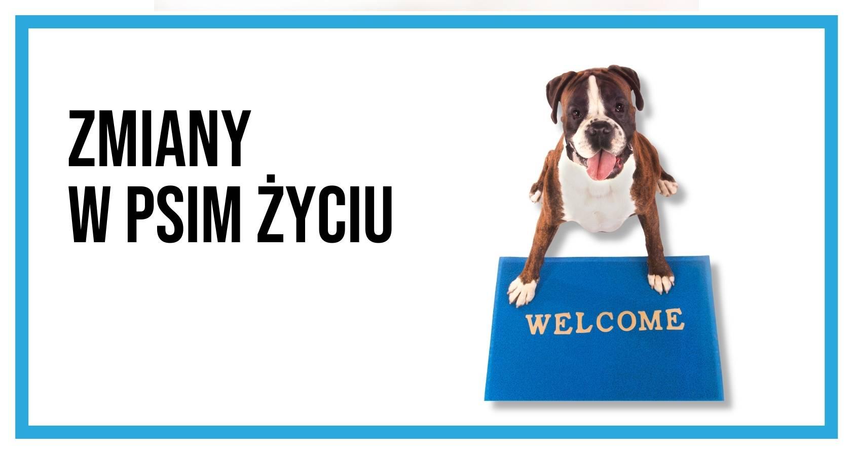 Pies siedzący na macie z napisem Welcome